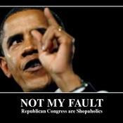 Not my fault republican congress are shopaholics 4c2c59