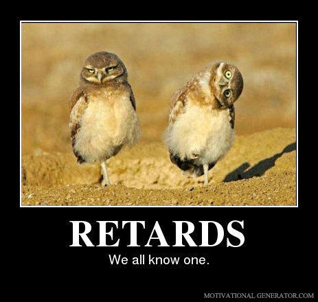 - OMFG the right owl looks retarded AND has a boner.